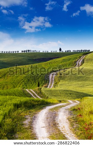 A country road in Tuscany, Italy. - stock photo