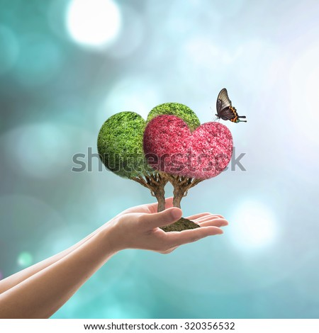 A couple of beautiful heart shaped green and red trees in love with butterfly on woman's hand on soil w/ blur abstract background of blue bokeh vintage style color tone: World heart day campaign/ idea - stock photo