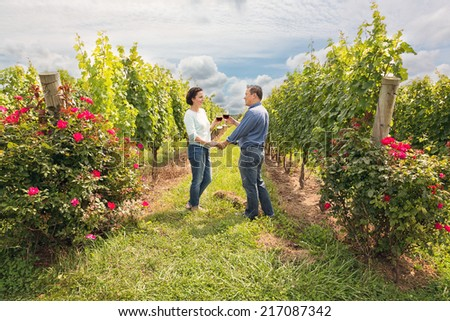 a couple toasting with a glass of wine in a vineyard - stock photo
