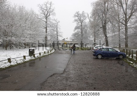 A couple walking in a park in winter