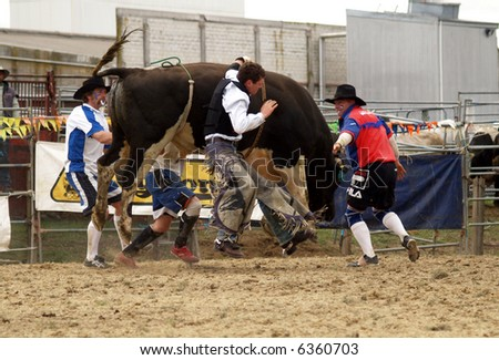 A cowboy falling of a bull but his hand is caught in the rope - stock photo