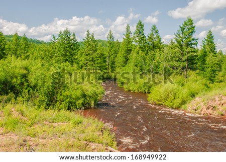 a creek in the forest, China - stock photo