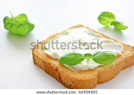 A crusty toasted bread with cheese and a basil leave isolated on a white background - stock photo