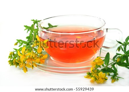 a cup of St. John's Wort Tea with fresh flowers