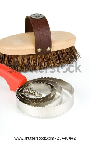 A curry comb and brush for horse grooming.