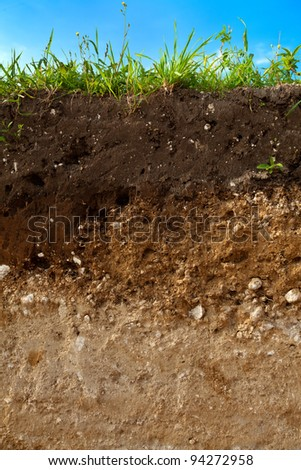 A cut of soil with different layers visible and grass on top - stock photo