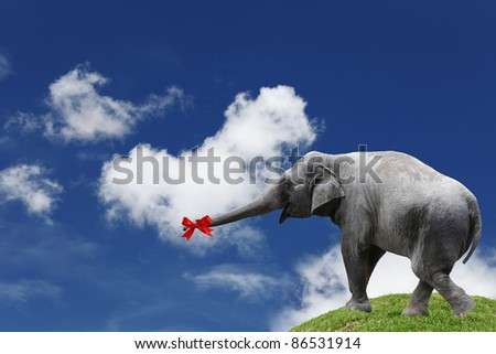 A cute baby elephant with a red ribbon bow tied to its trunk while standing on a green grassy hill overlooking a blue cloudy sky.