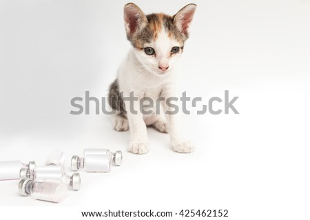 A cute cat and bottle glasses vaccine  isolated on white background,selective focus - stock photo
