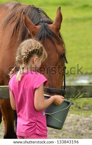 A cute little girl with bucket of water feeding a horse - stock photo