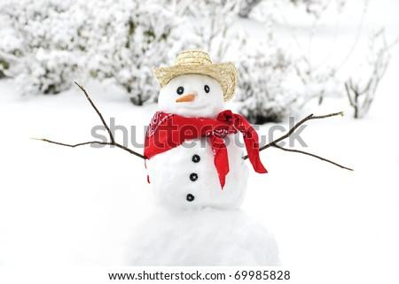A cute little snowman wearing a cowboy hat and bandana - stock photo