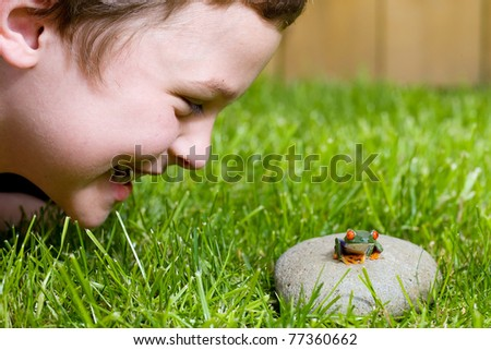 a cute young boy looking at a small red eyed tree frog outside