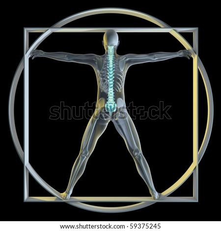 A 3d generated person posed like the famous Vitruvian Man (Symbol of health) rendered in a x-ray style highlighting the spine. - stock photo