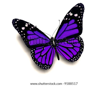 A 3D image of a purple butterfly - stock photo