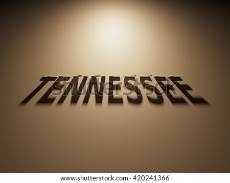 A 3D Rendering of the Shadow of an upside down text that reads Tennessee.