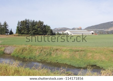 A dairy farm in the Fraser Valley/A dairy farm in the Fraser Valley/A dairy farm in the Fraser Valley - stock photo