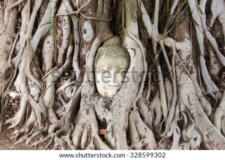 A damaged old Buddha head sand stone in tree growing roots in Thailand