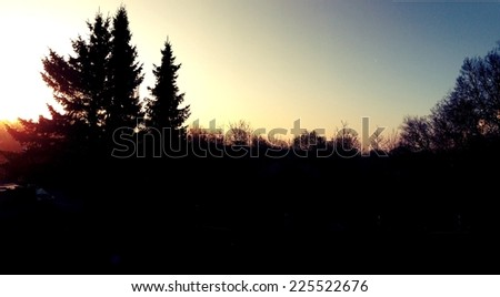 A dark forest silhouetted against a bright evening sky. - stock photo