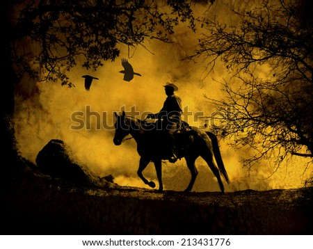 A dark spooky image of a silhouette cowboy with clouds and birds flying above. - stock photo