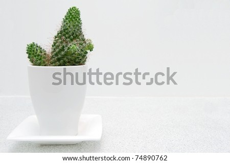 A Decorative Cactus in a White Pot on a Bathroom Counter with Room for Text - stock photo