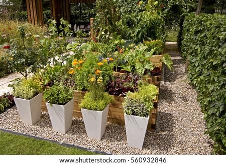 herb Bed Images RoyaltyFree Images Vectors – Decorative Herb Garden