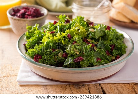 A delicious kale salad with dried cranberry and pumpkin seed. - stock photo