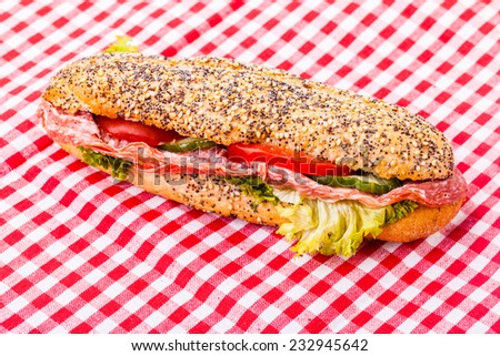 a delicious salami sub sandwich over a classic red and white tablecloth - stock photo