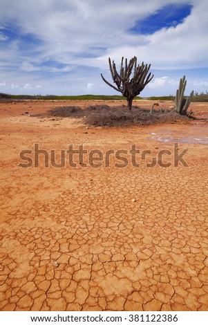 A desert landscape on the Hato Plain on Curacao, Netherlands Antilles.