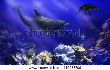 A digital render of a dolphin and a sea turtle meeting in an underwater coral reef garden. - stock photo