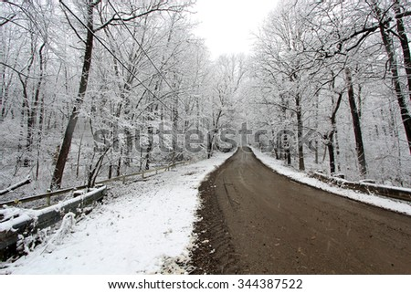A dirt road in winter in Michigan.