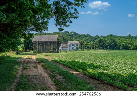 A dirt road leads to this old homestead in Monmouth Battlefield State Park in Freehold NJ. - stock photo