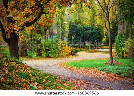 A dirt road through the beautiful autumnal park - stock photo