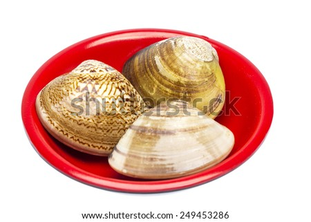 a disk of shellfish - stock photo
