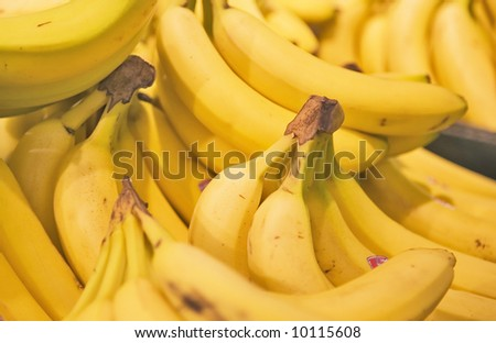 A display of yellow bunches of Bananas in a Grocery Store.