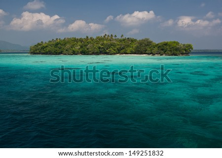 A diverse array of reef-building corals grow in shallow water near a tropical island in the Solomon Islands.  This area is found within the Coral Triangle and is high biological diversity. - stock photo