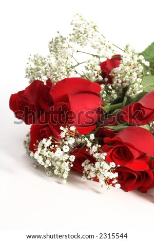 A Dozen red Valentine's Day Roses with baby's breath