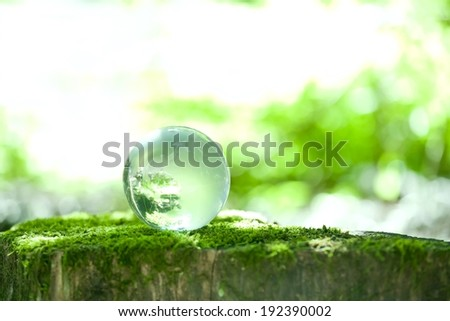 A drop of water sitting on a moss covered stump. - stock photo