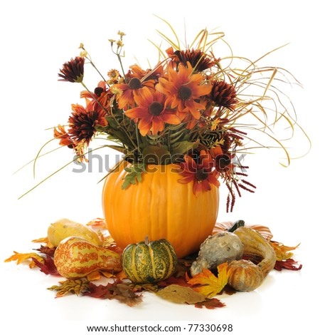 A fall bouquet in a pumpkin shell, surrounded by colorful gourds and leaves.  Isolated on white. - stock photo