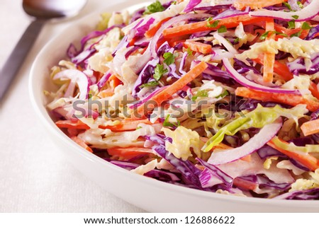 A family size bowl of healthy coleslaw, made with green and red cabbage, carrot, red onion and a dressing with mayonnaise and low fat yoghurt. - stock photo