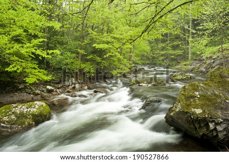 A fast flowing stream runs through  a eastern Tennessee forest in springtime.