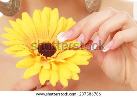 A female hand touching a flower, closeup - stock photo