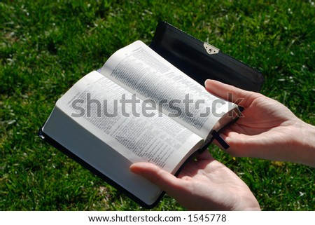 A female studying a Holy Bible