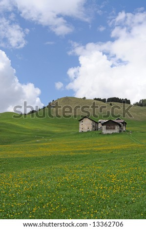a field and a few old cottages in the swiss alps