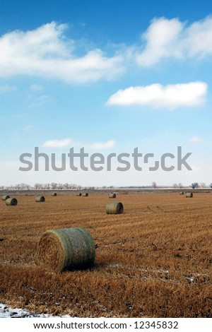 A field of hay rolls at a central Kansas farm. - stock photo