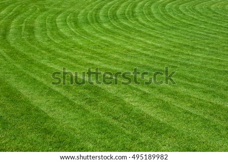 A field with freshly cut green grass in city park