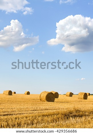 A field with straw bales after harvest on the blue sky background with clouds - stock photo