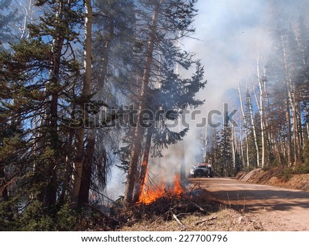 A fire engine responds to a forest fire along the road. - stock photo