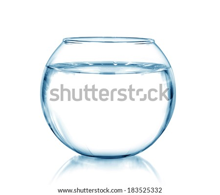 a fish bowl, isolated on white - stock photo