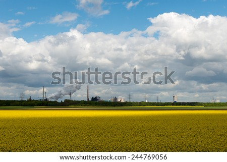A flowering rape field in front of a backdrop of industrial steel furnaces, chimneys in the Ruhr Area.
