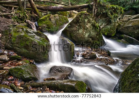 A flowing spring stream cascades through moss-covered rocks.