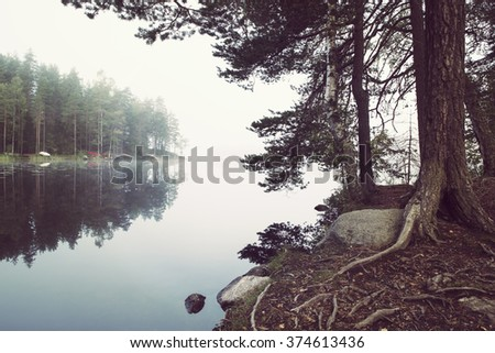 A foggy morning by the lake. Fog is covering the lake, rowing boats on the other side. Focus point on the pine tree. Still water makes reflections. Image has a vintage effect applied. - stock photo